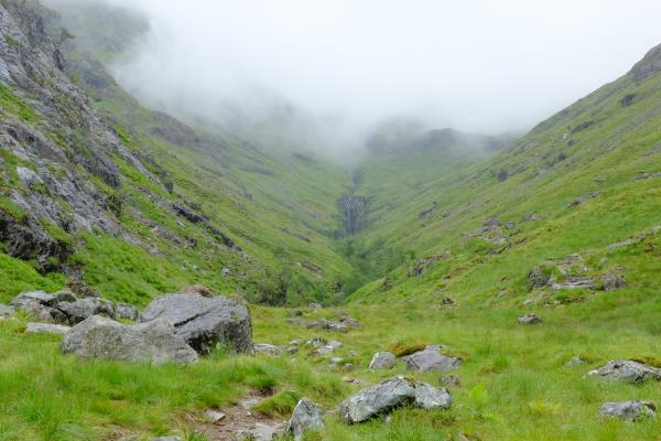 Photo of Path out of Hidden Valley obscured in mist