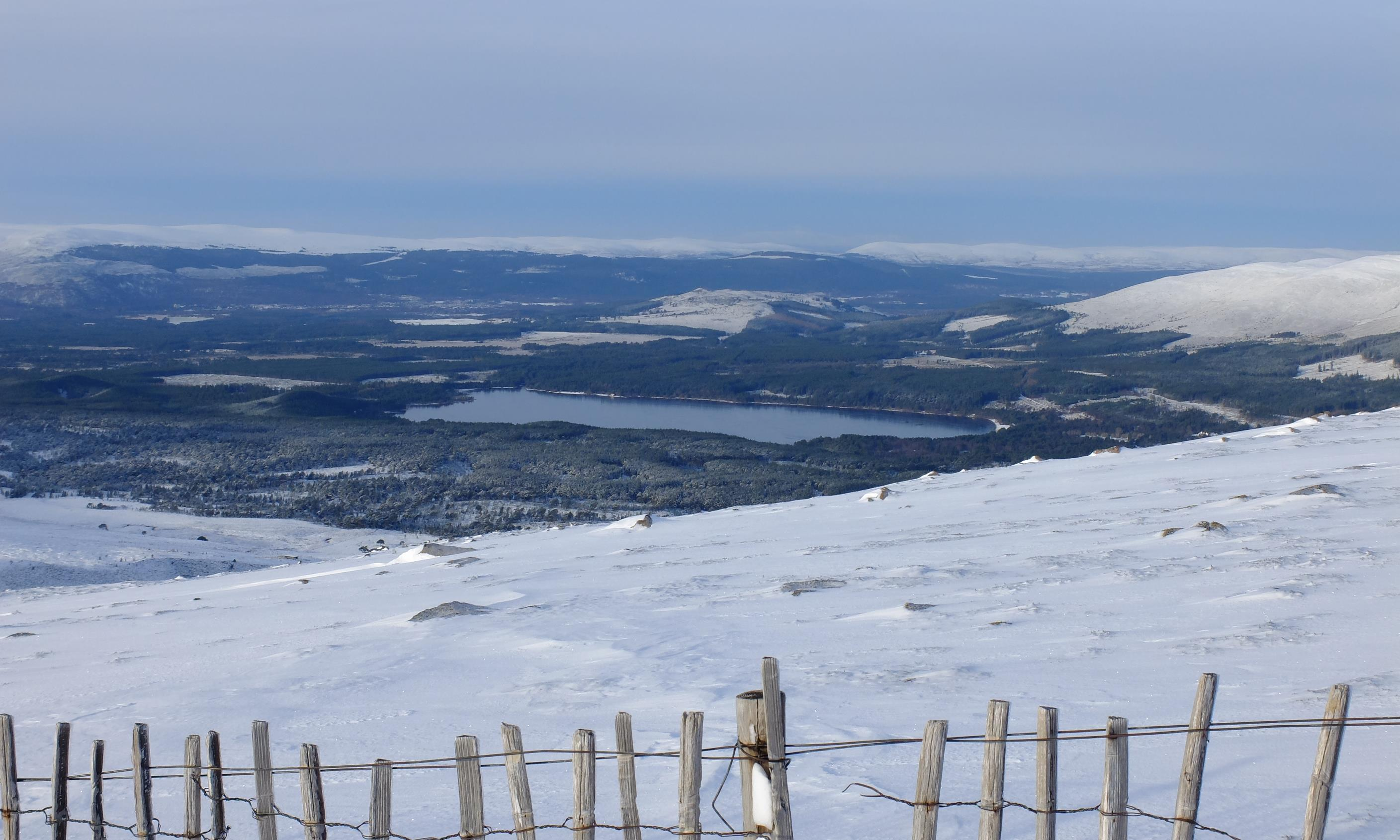 Wild Exploring - Good conditions on Cairngorm Plateau
